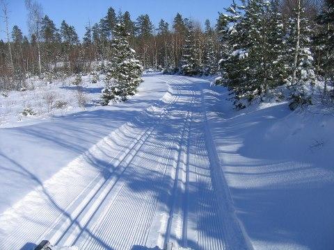 Rapport om skidanläggningar i Stockholm